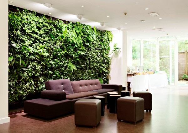 Natural Green Walls In Living Room